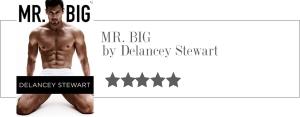 delancey stewart - mr big